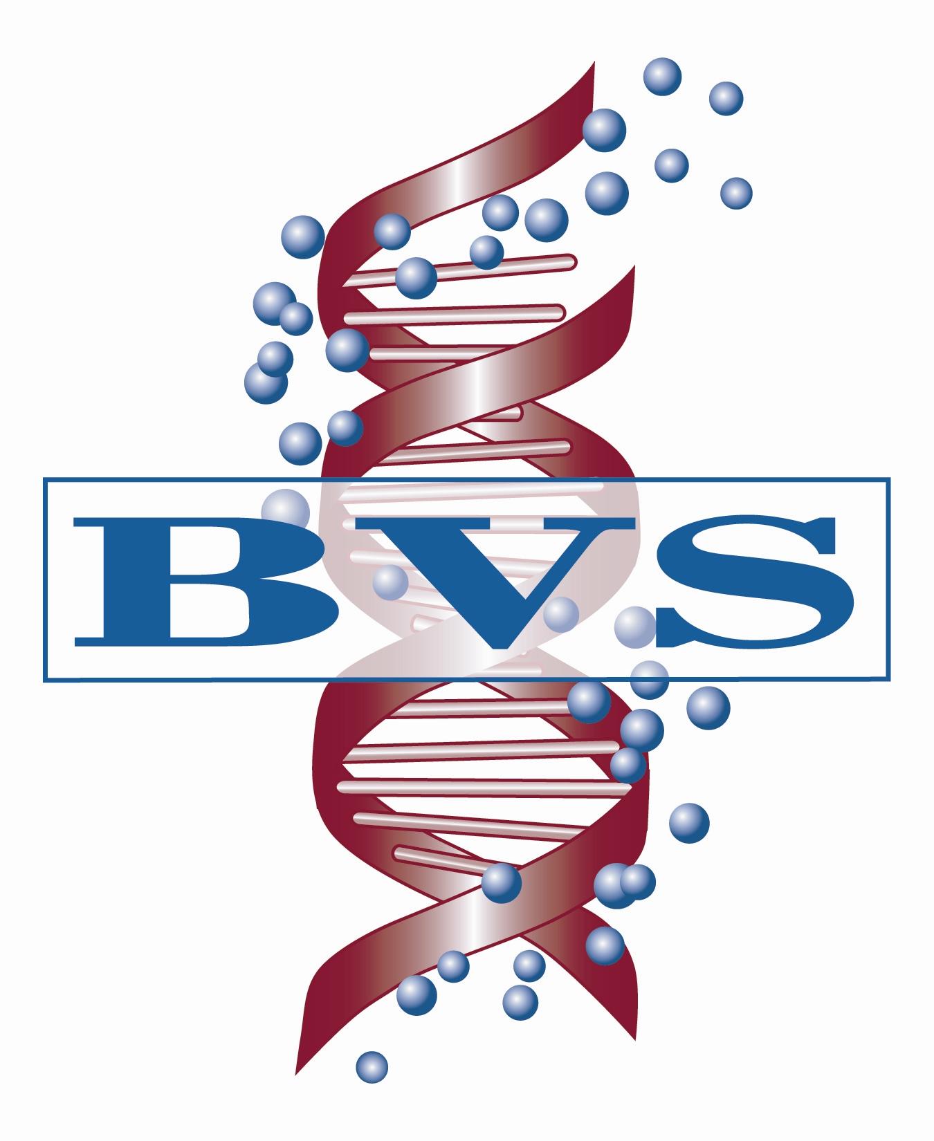 BVS_logo.jpg