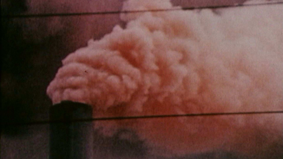 FML_pink_smoke2_560.jpg