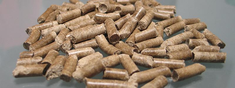 pellets-head-53017.jpg