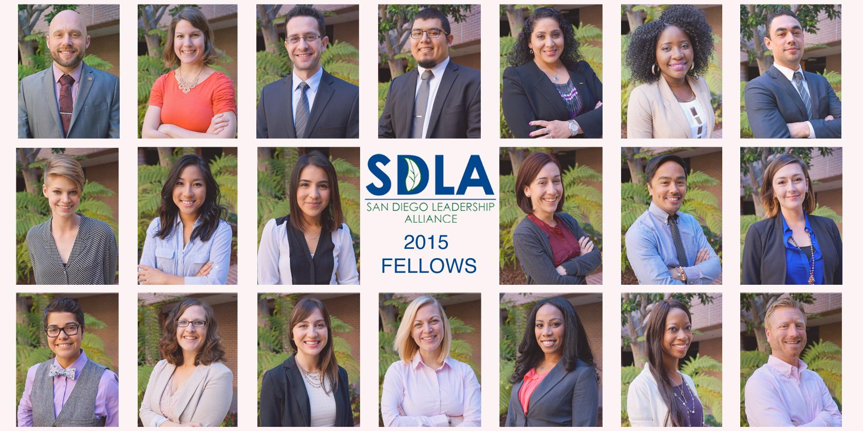 2015 SDLA Fellows