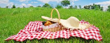 picnic_pic.jpeg