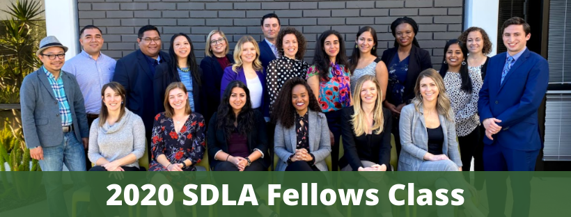 SDLA 2020 Fellows