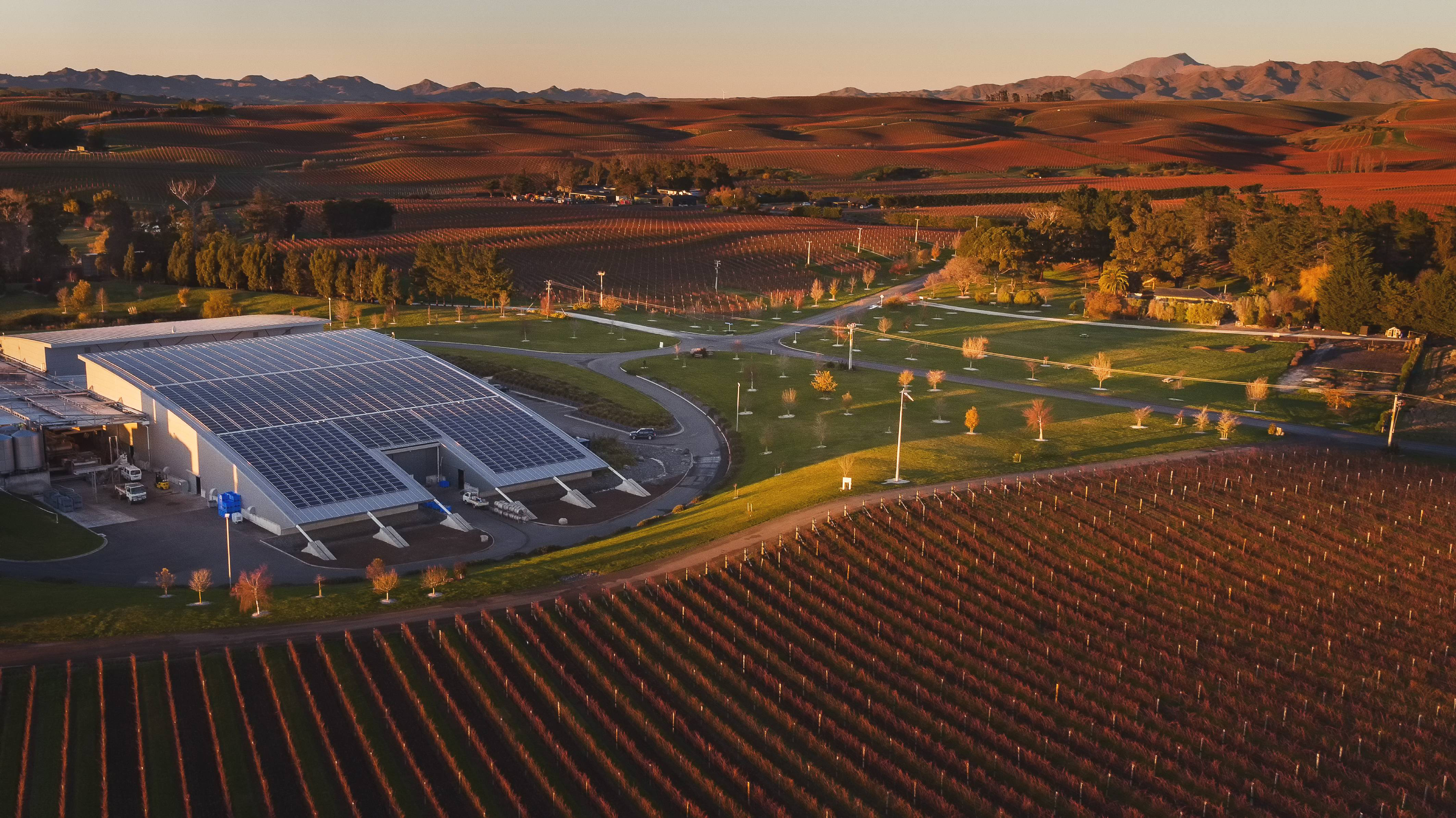 Yealands_Solar_Array_Aerial_View
