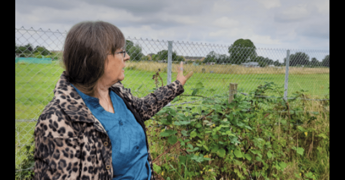 Eastern Gateway plans will damage our town