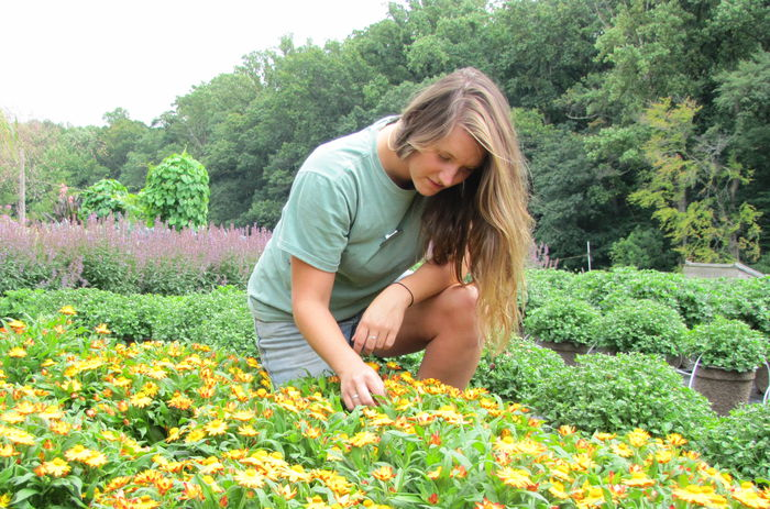 183683_Professional_Gardener_Program_Perkins_Rebecca_Longwood_student_photographer_-2.jpg