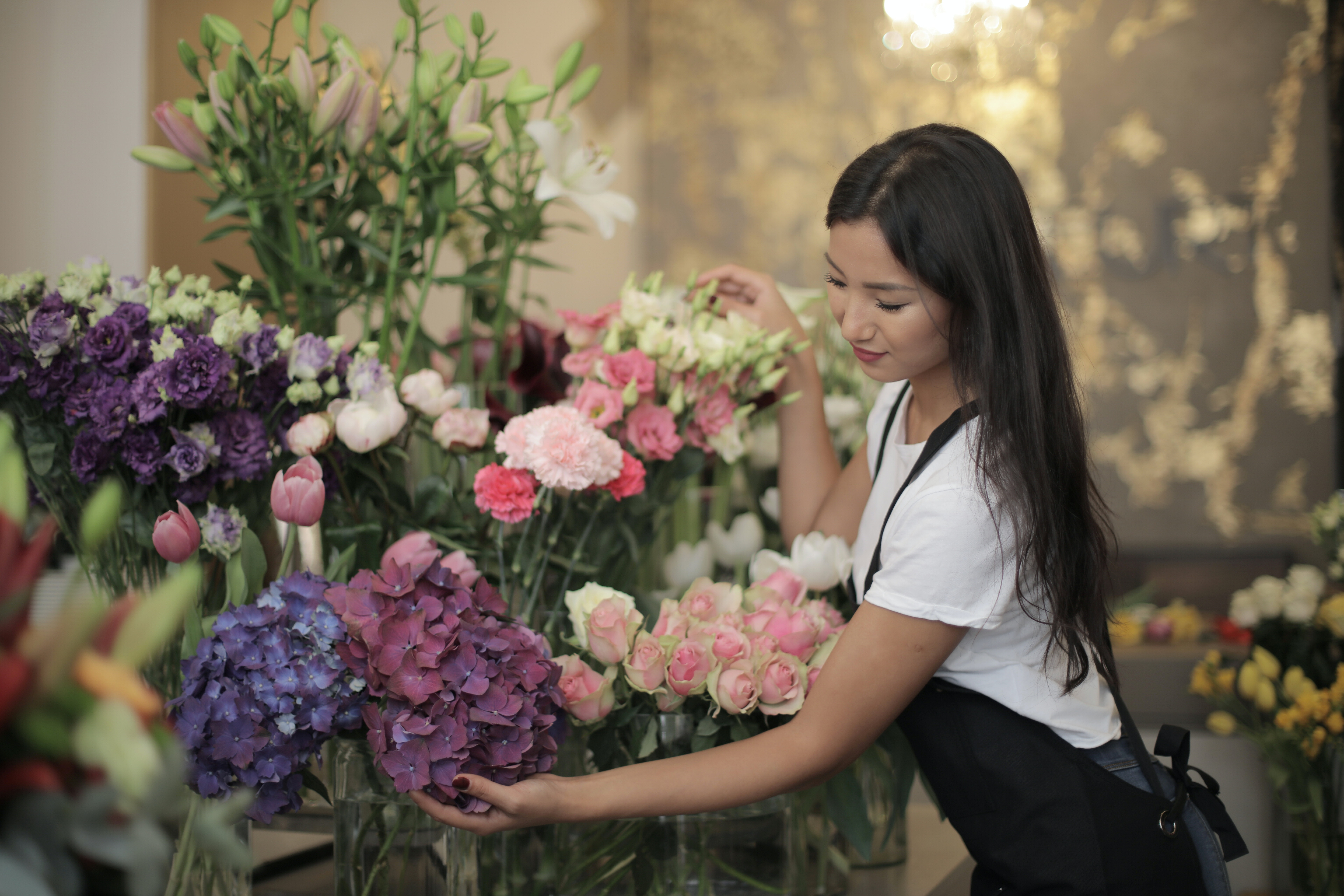 FloralDesigner3.jpg