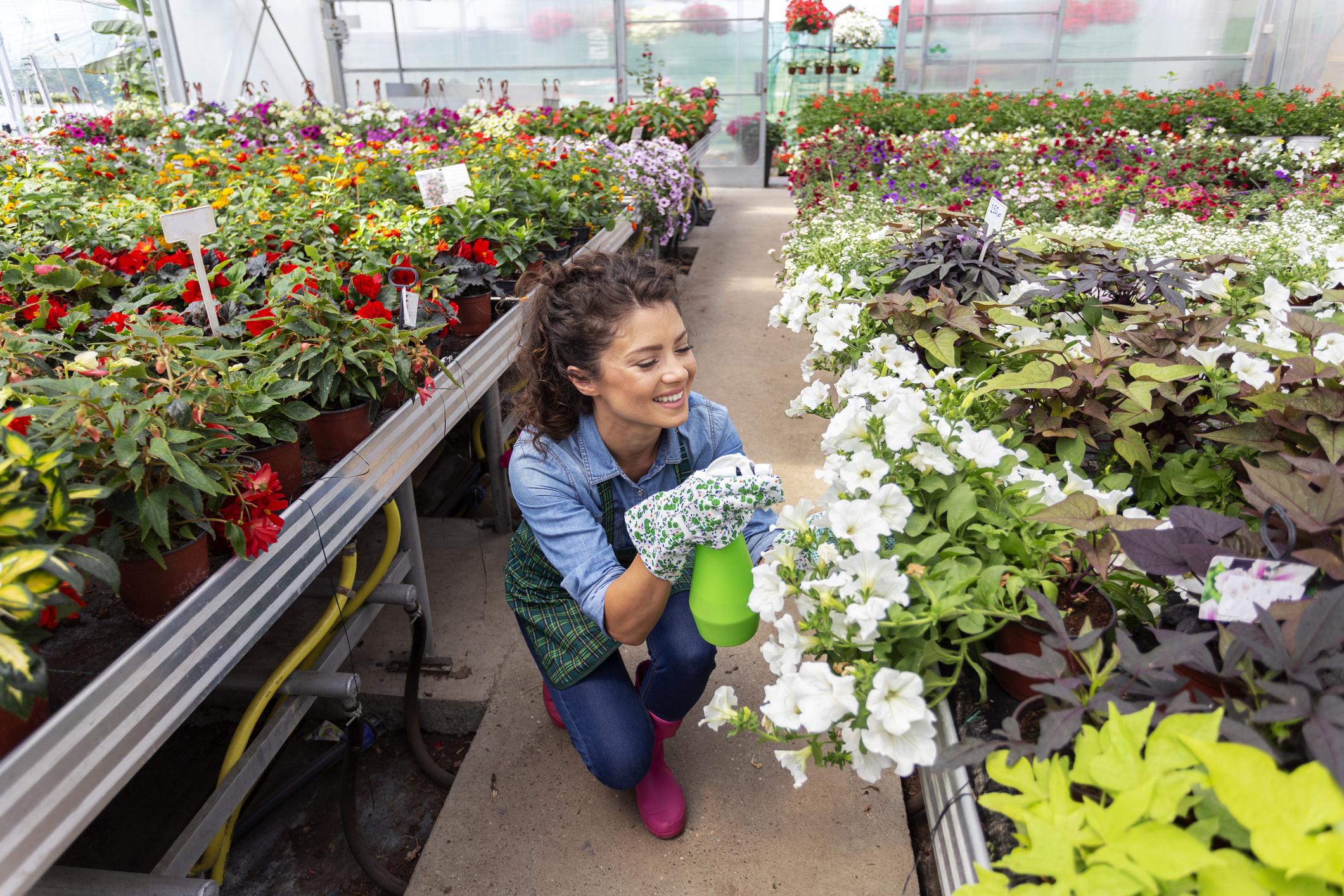 Floriculturist_New_Background.jpg