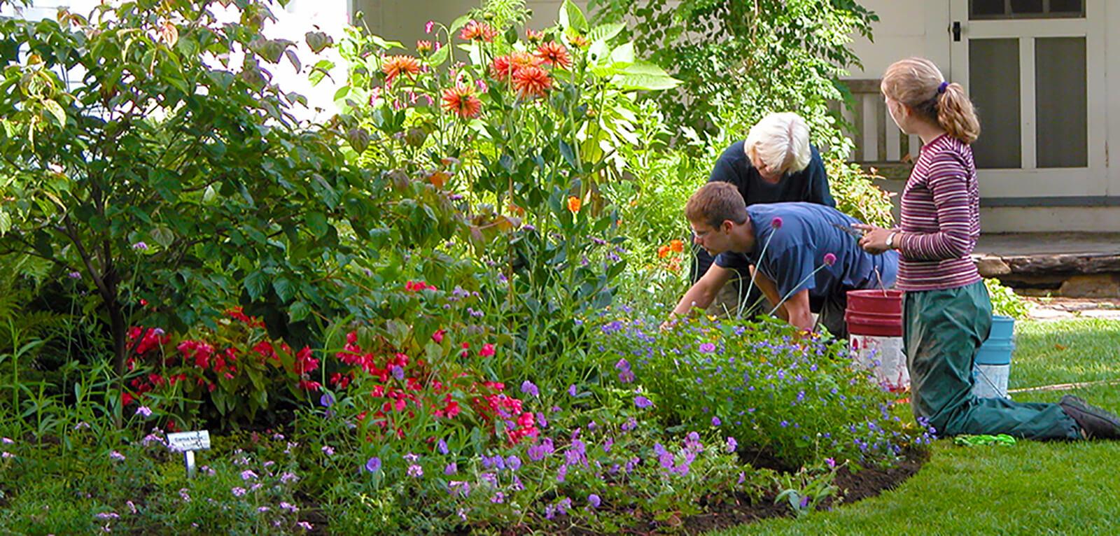 GardenerMainEdited.jpg