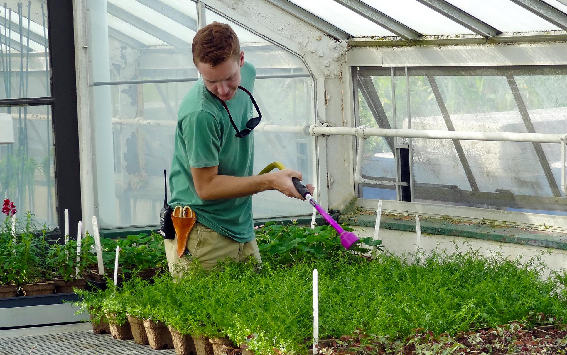 GardenCenterWorkerMain.jpg