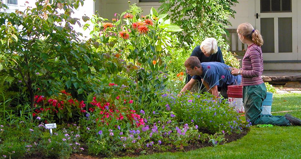 GardenerMain.jpg