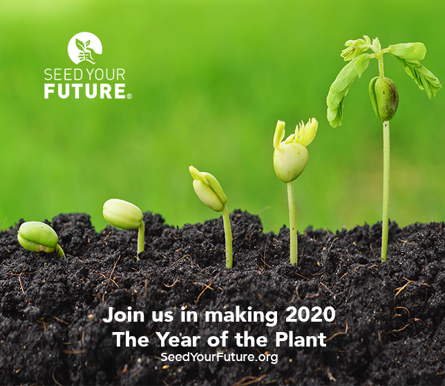 SYF_2020_Year_of_the_Plant.png