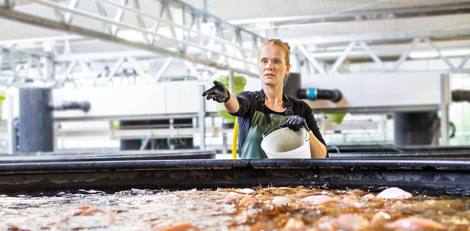 AquacultureMainEdited.jpg