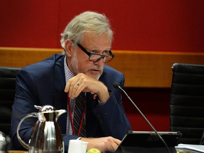 Robert Borsak MLC