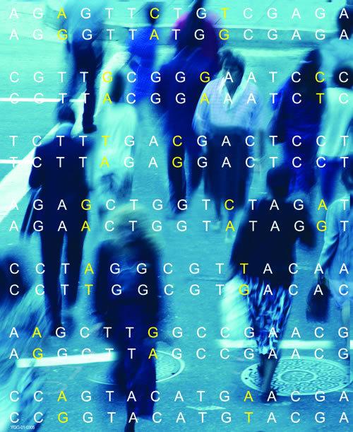 gene4.jpg