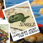 Fish to Schools Banner