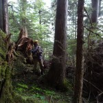 Hoonah Ranger District's Ken Anderson crusies timber on False Island.