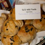 201211_SCS_WildFoodsPotluck_Andis-6512