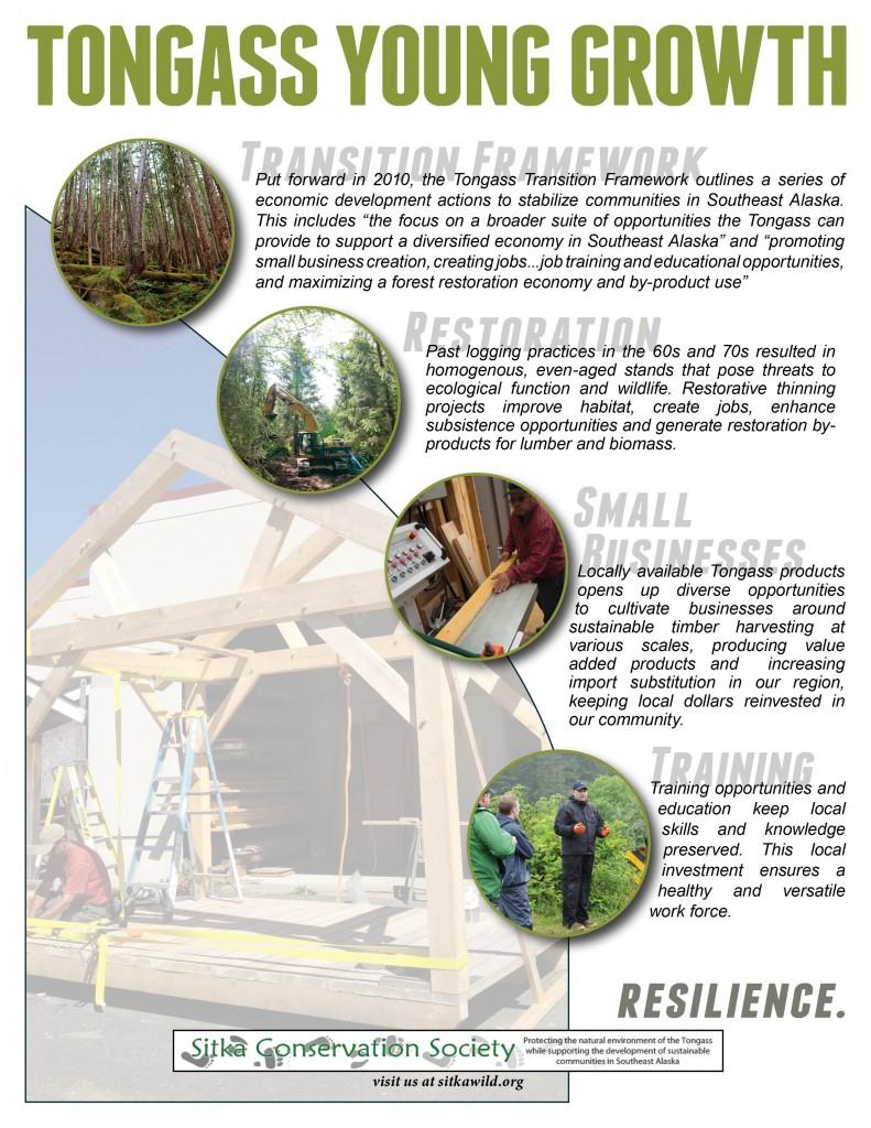 Bike shelter briefing