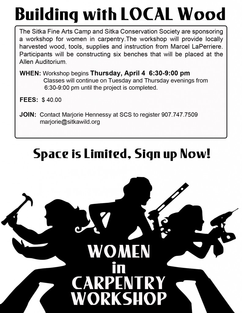 As part of our work through the National Forest Foundation's Community Capacity and Land Stewardship program, we are offering this class to allow women who are novices at woodworking the opportunity to learn about local wood products and introductory woodworking.