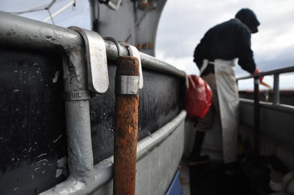 An old (but faithful) gaff hook. Photo by Berett Wilber