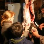 Deer Skinning
