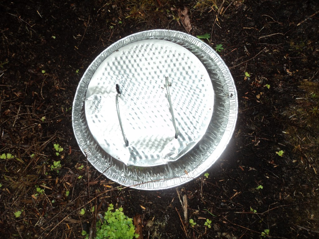 Insect Trap with Rain Cover