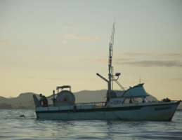 Photo for Voices of the Tongass - Fishing Village Blues
