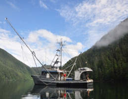 Sitka Conservation Photo: Fishing Lines and Family Ties