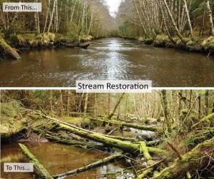 2_stream_restoration_web-300x251.jpg
