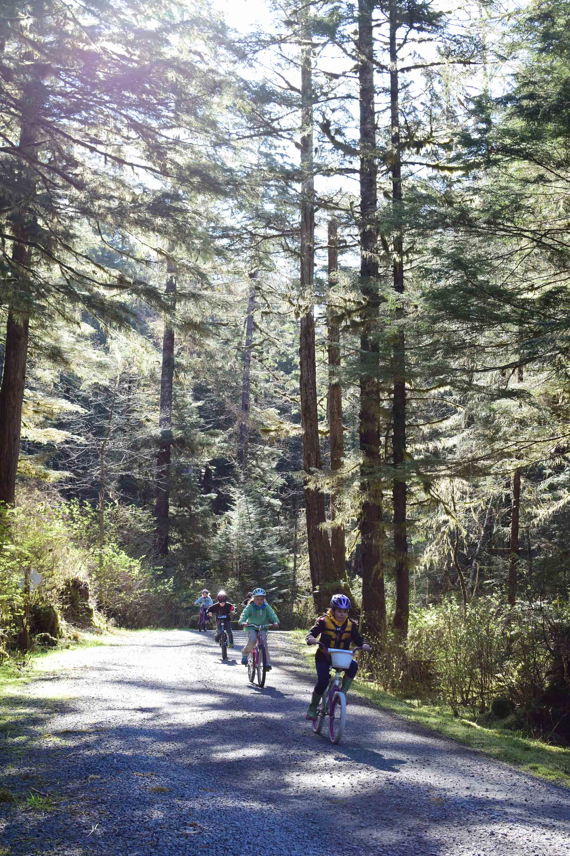 Bike_Ride.jpg