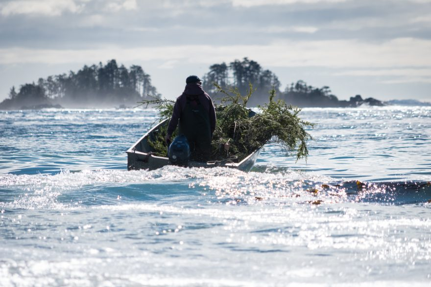 herringsubsistenceculturesitka-1-of-1-880x587.jpg