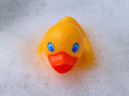 Plastic duck in bubble bath