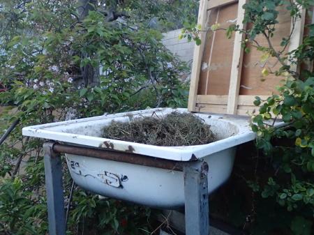 Compost_bath.JPG