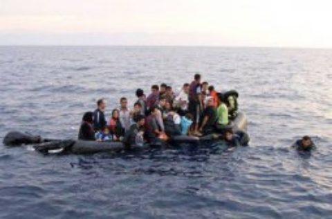 Accueil des réfugiés : quelle réponse des socialistes européens ?