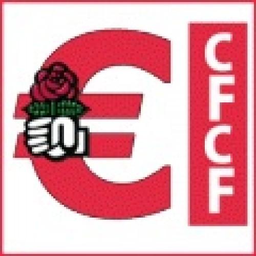 Logo du groupe Commission Fédérale du Contrôle Financier CFCF