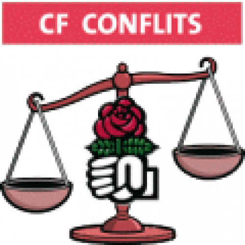 Logo du groupe Commission Fédérale des Conflits