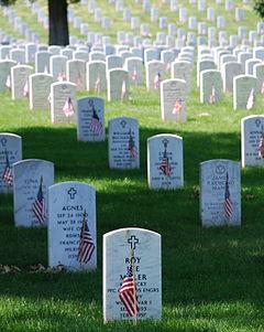Graves_at_Arlington_on_Memorial_Day.JPG