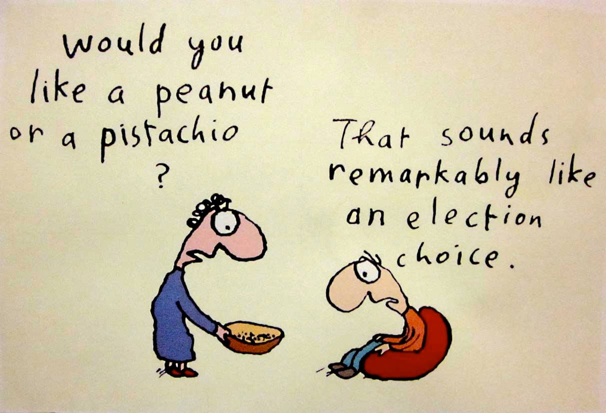 leunig-election.jpg