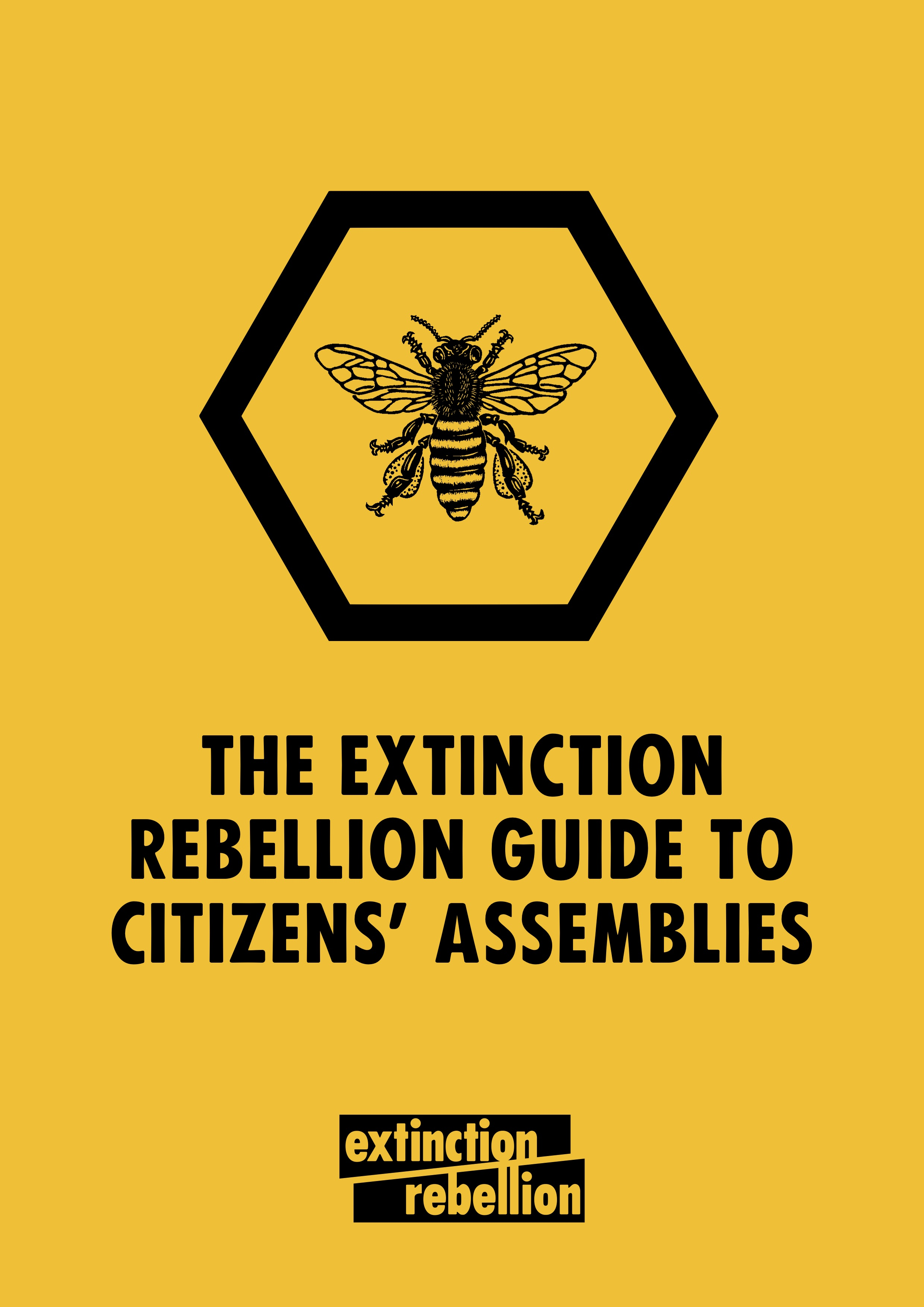 The-Extinction-Rebellion-Guide-to-Citizens-Assemblies-Version-1.1-25-June-2019.jpg