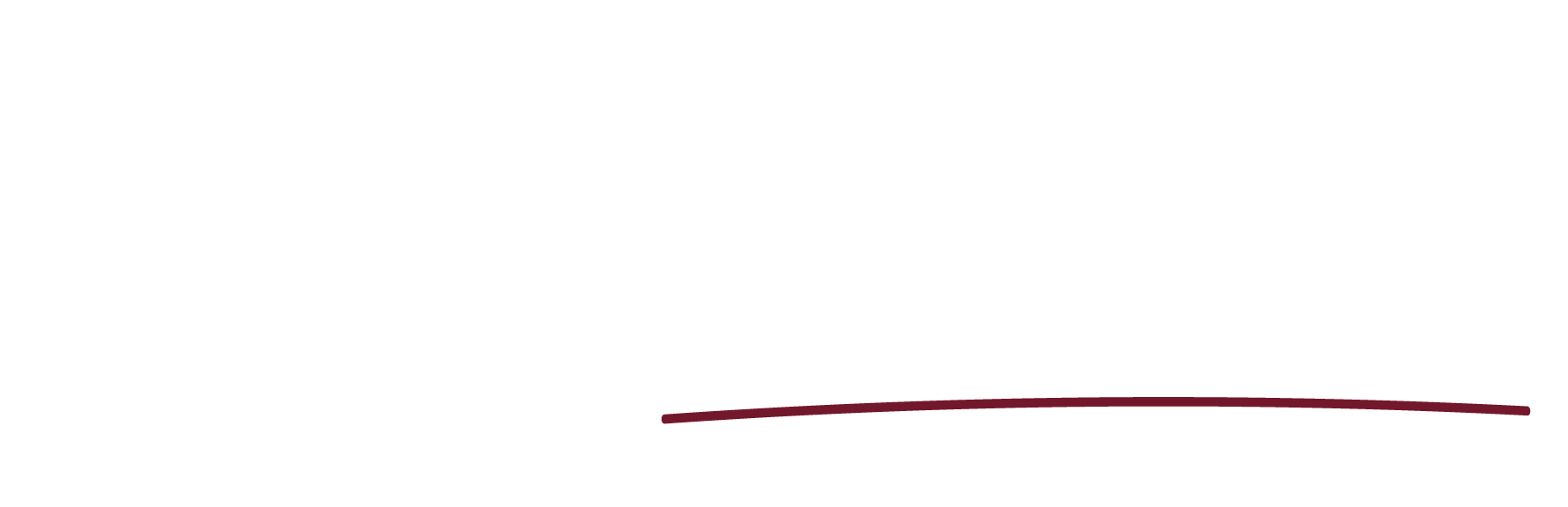 Amy for South Brisbane 2020