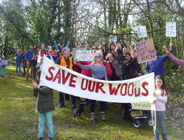 Save_Southwark_Woods_2.jpg