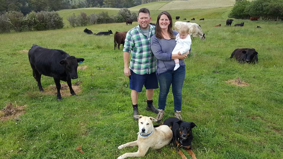 Matt_rach_regan_cows_and_dogs.jpg