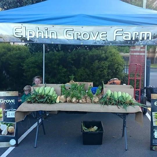 Elphin_Grove_Farm.jpg