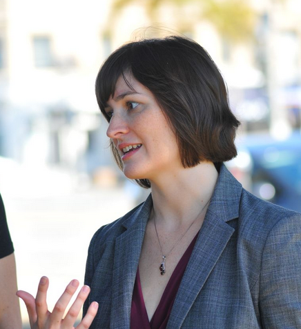 Daily Breeze: Sandra Fluke tries to parlay national fame into victory in California 26th Senate District race