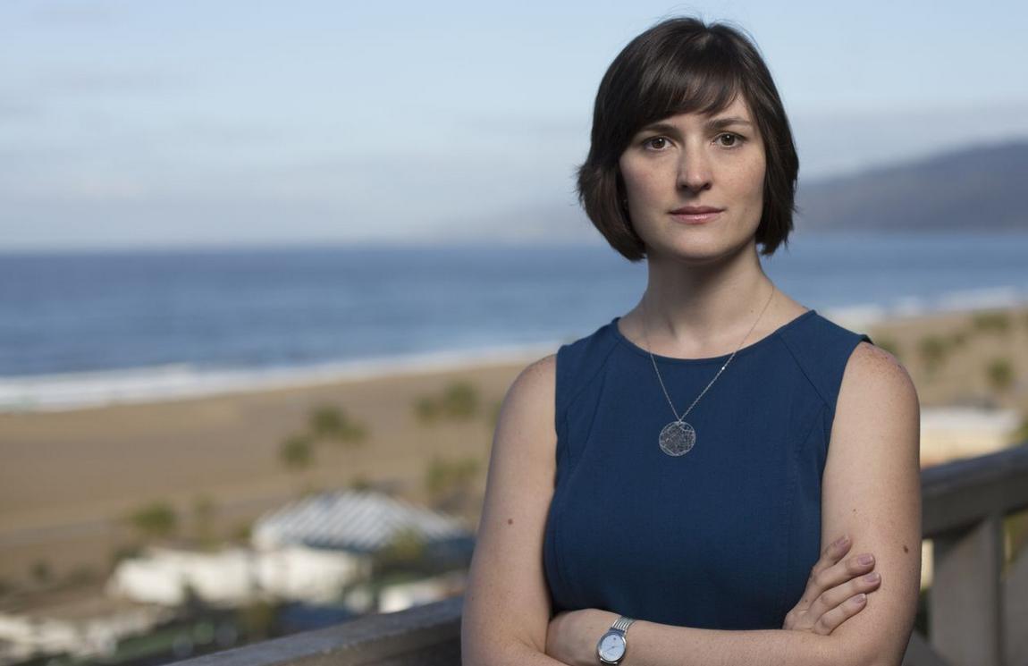 Santa Monica Daily Press: And the next State Senator will be …