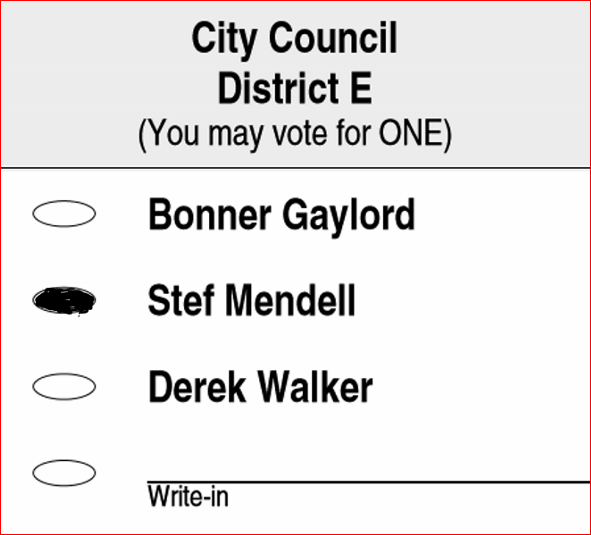 District E ballot