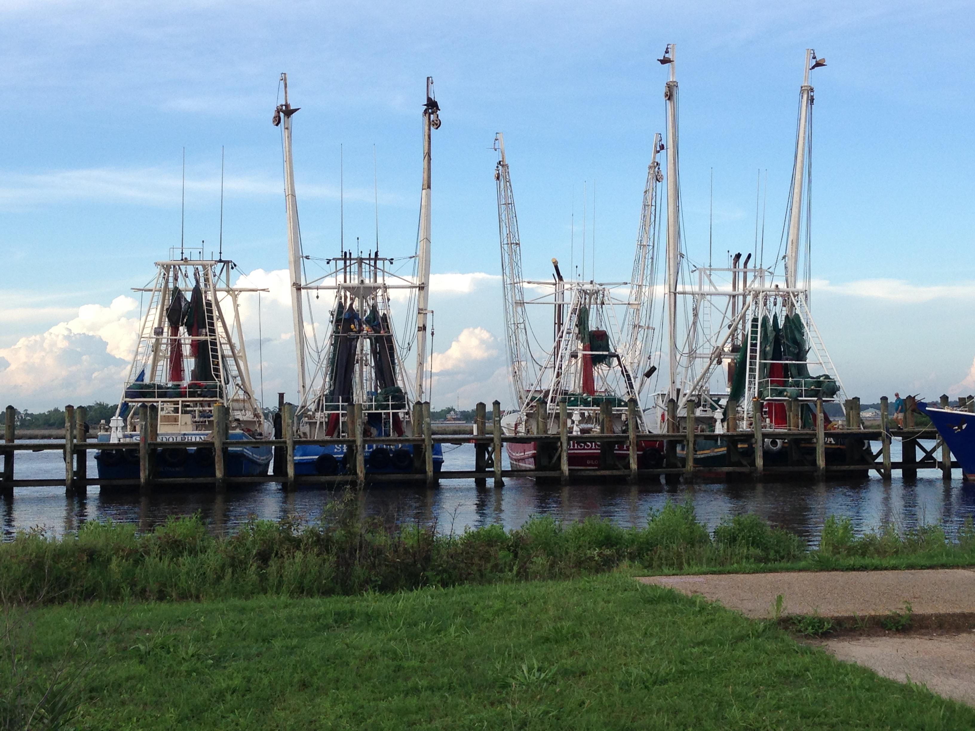 Fish_Boats_-_1.jpg