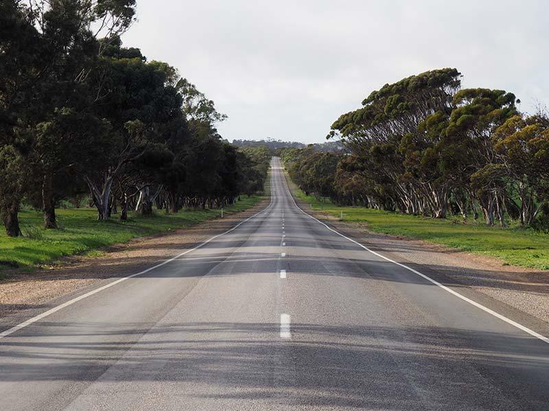 Report a Road