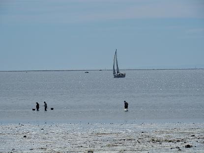 Funding for coastal protection efforts across SA
