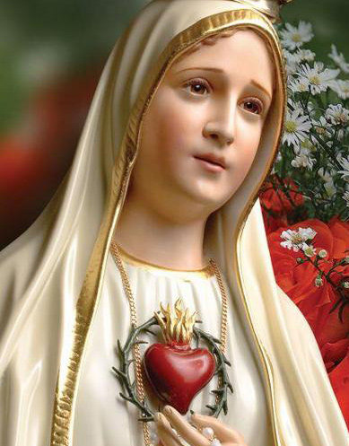 Immaculate_Heart_Thorns_3_-_Cropped.jpg